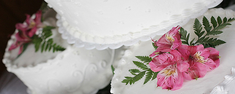 Wedding Cake Basics: Choosing the Perfect Cake